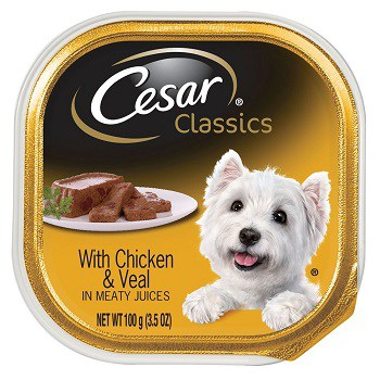 Best Dog Food For Golden Retrievers With Skin Allergies