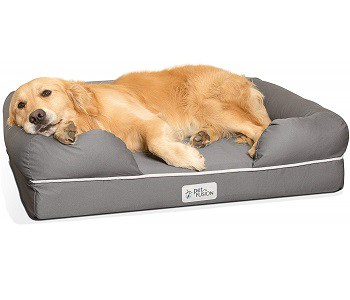 5 Best Dog Beds For English Bulldogs Great Dog Zone